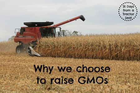 Why we choose to  raise GMOs