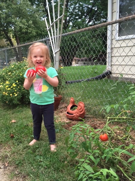 Iowa toddler with tomatoes