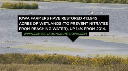Iowa farmers have restored 413,945 acres of wetlands (to prevent nitrates from reaching water), up 14% from 2014.